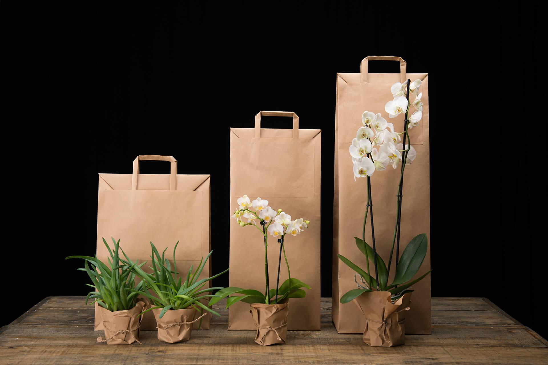 las bolsas de cartón te ayudan a tener una empresa ecológica