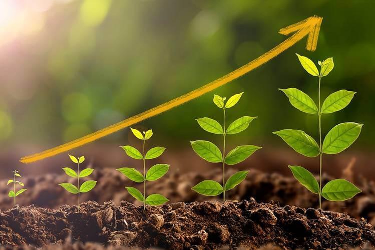 zrównoważony-rozwój-na-święta
